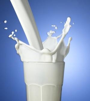 latte-300x336