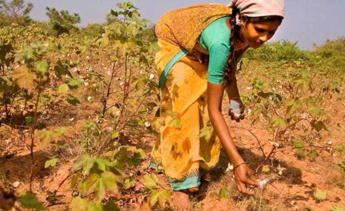 Agricoltori-in-India