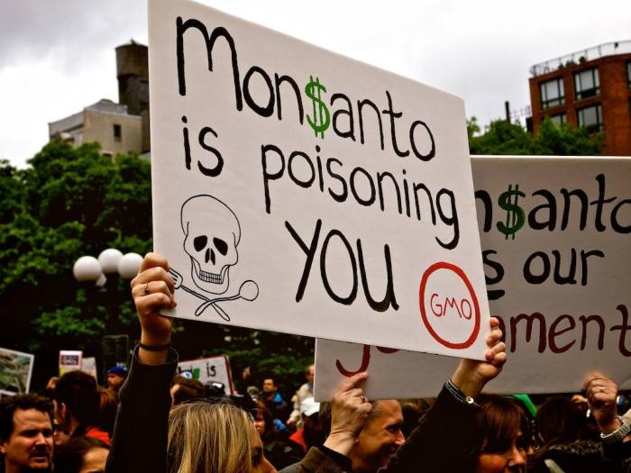 Risultati immagini per La Monsanto avvelena